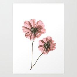 Pink Stem Flowers Art Print