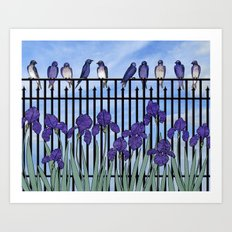 purple martins & purple irises Art Print