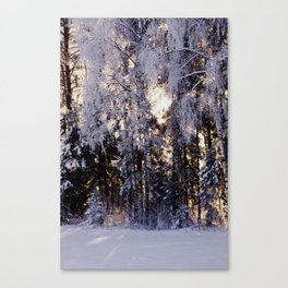 Snowy Winter Wonderland Canvas Print