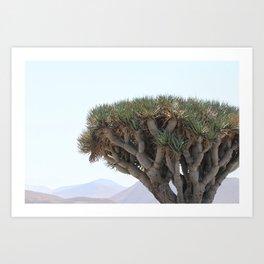 Trees of Lanzarote Art Print