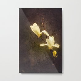 Dusty Metal Print