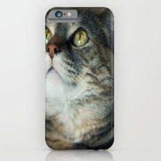 Kitty Cat Slim Case iPhone 6s