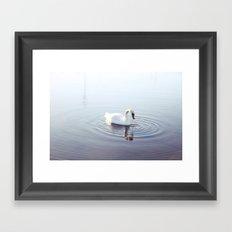 the beautiful swan Framed Art Print