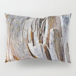Relic of the Forest Pillow Sham