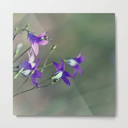 BlueBell Flower Nature Photography  Metal Print