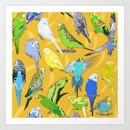 Budgies - Yellow Art Print