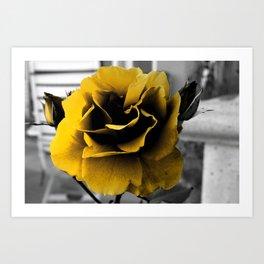 Curse of the Golden Flower Art Print