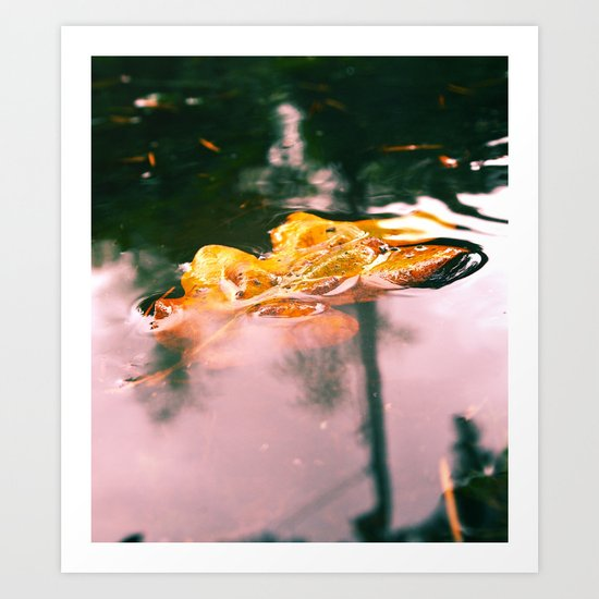 Submerged leaf Art Print