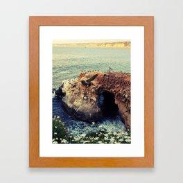 La Jolla Framed Art Print
