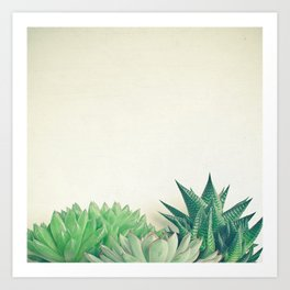 Succulent Forest Art Print