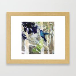 Hummingbird Haze Framed Art Print