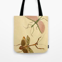 Naturalist Stick Bugs Tote Bag