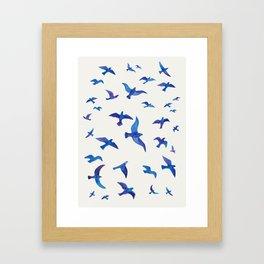 Blue Birds Framed Art Print