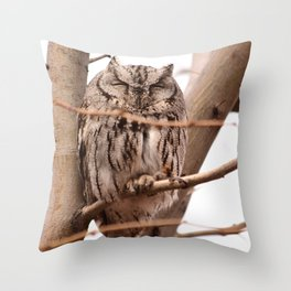 Wild Owl - Ivins, Utah Throw Pillow