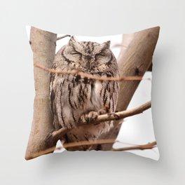 Wild Owl - Ivins, Utah Throw Pillow