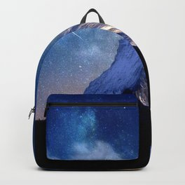 F667 Mountain Backpack
