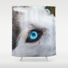 Siberian Husky Eyes (Color) Shower Curtain