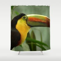 toucan Shower Curtains featuring Toucan... by Nature In Art...