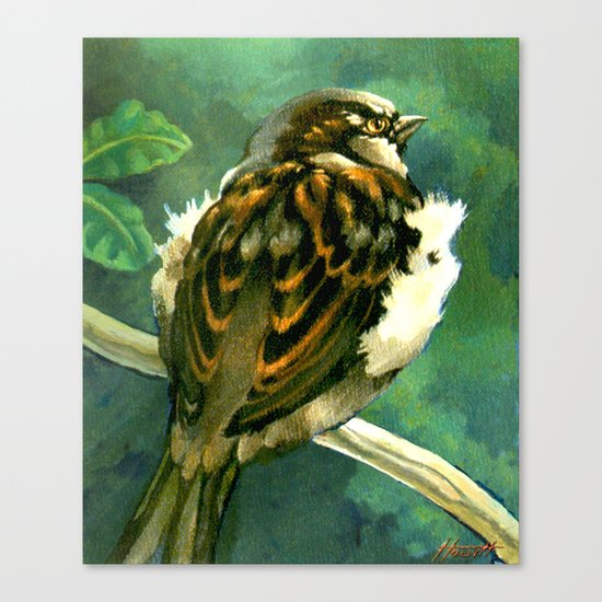 Sparrow in Puriri Tree Canvas Print