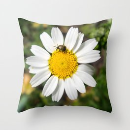 Magic Field Summer Grass - Chamomile Flower with Bug - Macro Throw Pillow