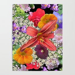 Newt in multi color floral Poster