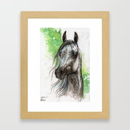 Grey arabian horse Framed Art Print