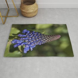 Witches hats blue Rug