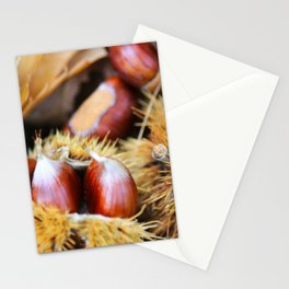 Chestnuts Stationery Cards