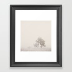 the magic of winter ...  Framed Art Print
