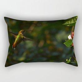 Hummingbird Near Totality 2017 Oregon Rectangular Pillow