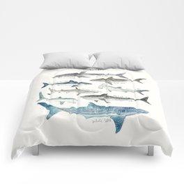 Sharks Comforters