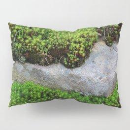 Vibrant Moss Pillow Sham