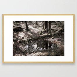 Pond Near Killarney Framed Art Print