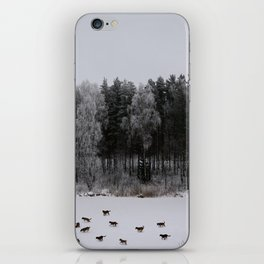 Winter's Tale iPhone Skin