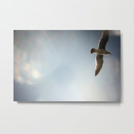 sky/gull Metal Print