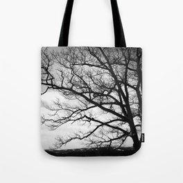The Wishing Tree II Tote Bag