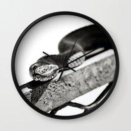 Northern Water Snake at Riverbend Wall Clock