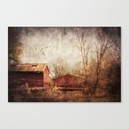 The Beauty of Change Canvas Print