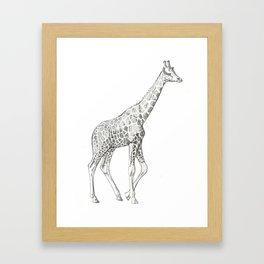 Nubian Framed Art Print