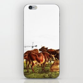 Cows & Cranes iPhone Skin