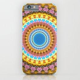 Space Mandala no32 - Rainbow Space Nebula v2 iPhone Case