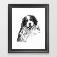 Bernese Mountain Dog Framed Art Print