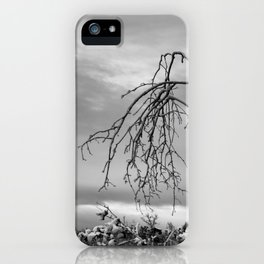 342 | bastrop state park iPhone Case