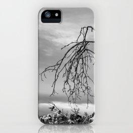 342   bastrop state park iPhone Case