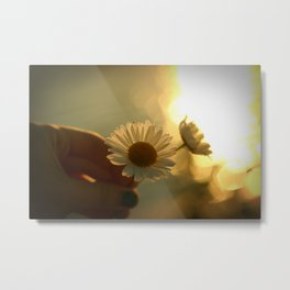 Flowers in the sunset Metal Print