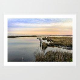 Wildgrass Along the Chesapeake Bay Art Print