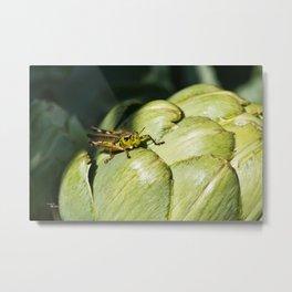 Artichoke Grasshopper Metal Print