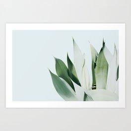 Agave I Art Print