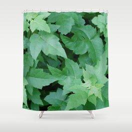 Settled Shower Curtain