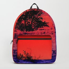 Sentinels-Pennington County Backpack
